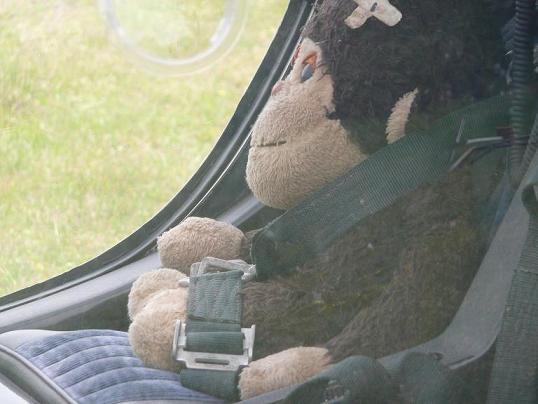 pilot?
